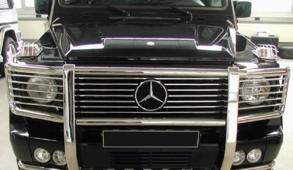 Front Protection Bar w. headlight grilles - stainless steel